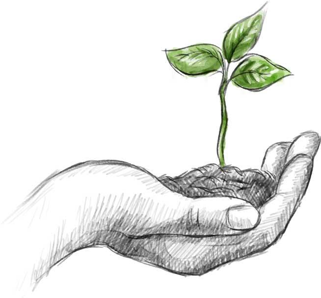 Jardines-de-la-patagonia-acciones-medioambientales-sustentabilidad