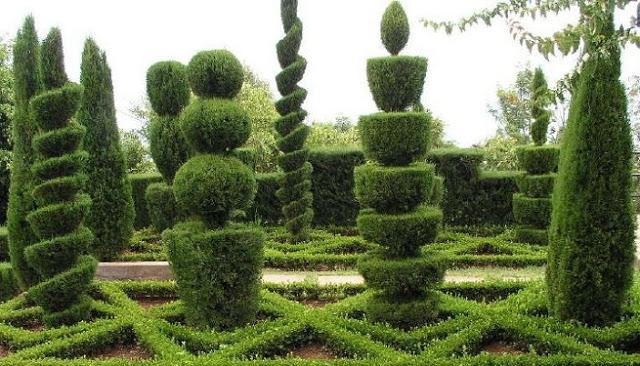 El arte topiario jardines de la patagonia for Jardines con arboles y arbustos