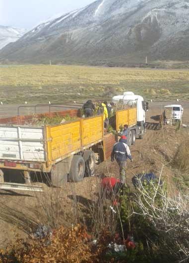 servicios-jardines-patagonia-vivero-bariloche-meliquina